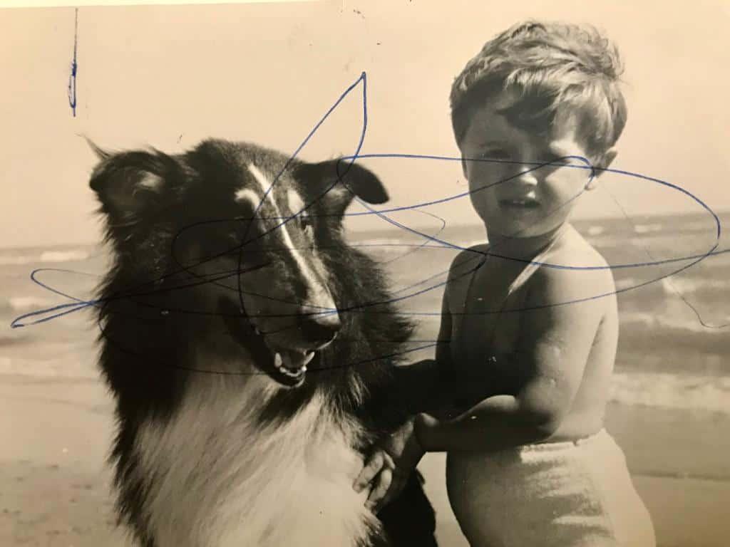 protezione-cani-e-gatti-vittoria